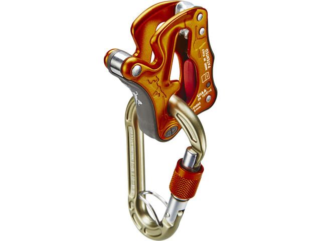 Climbing Technology Click-Up Kit per assicurazione arrampicata, arancione/oro